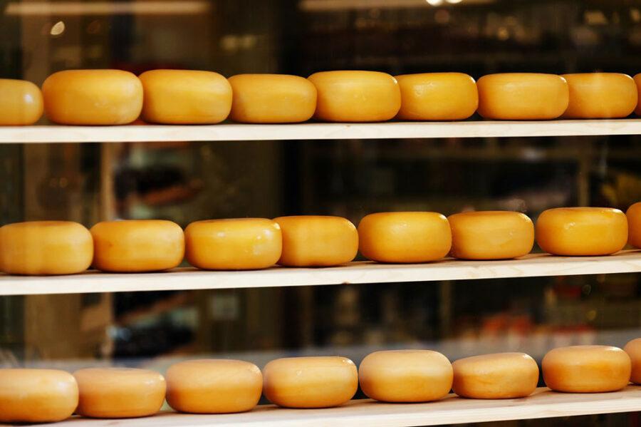 gooda yellow cheese gouda edam